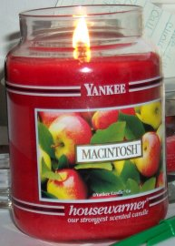 MacIntosh Apple Candle from Providence Place
