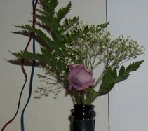 Cheap Rose